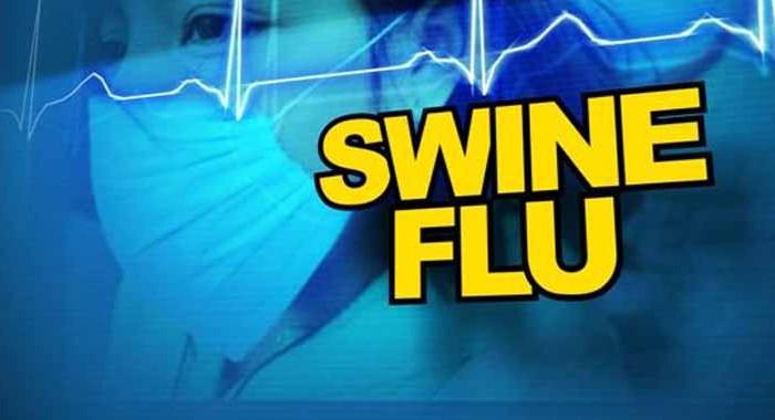 swine-flu-700x380