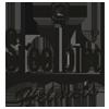Steelbird11