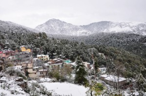view-of-snow-covered-mcleodganj-town-dharamsala-157360-300x199