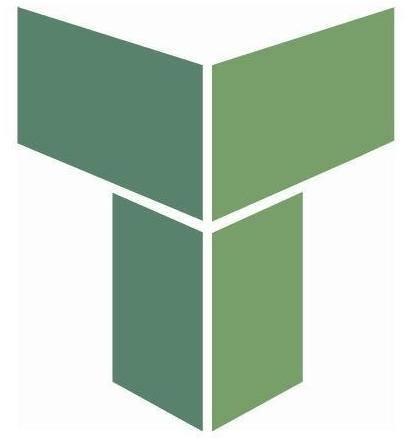 Tenon Group Company