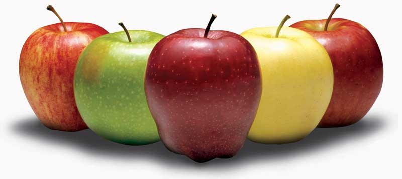 Washington-Apples-Beauty-Shot