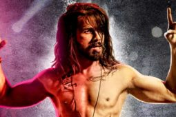 3rd Weekend Udta Punjab 19th Day Box Office Collection Total Worldwide Earning