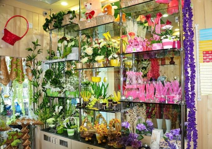 jalandhar-store-pic-small